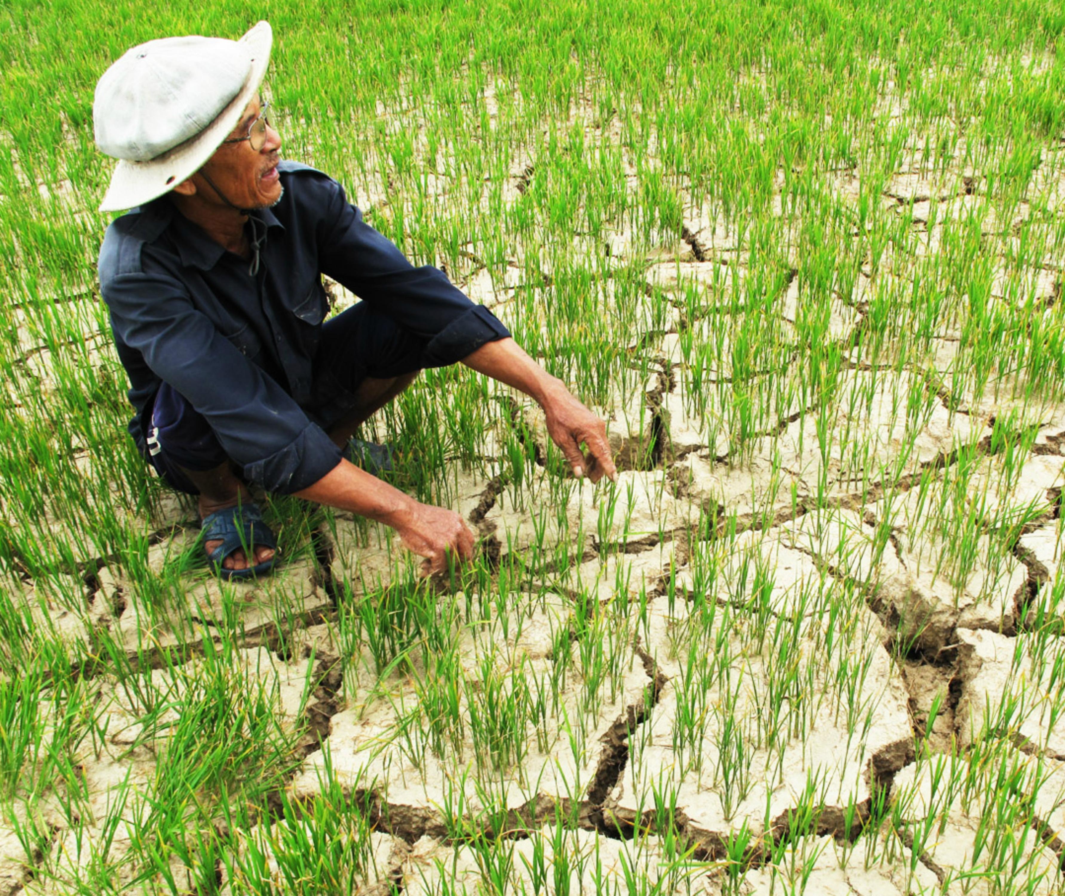"""Trung Cộng """"hứa"""" sớm xả nước """"giúp"""" Việt Nam chống hạn"""
