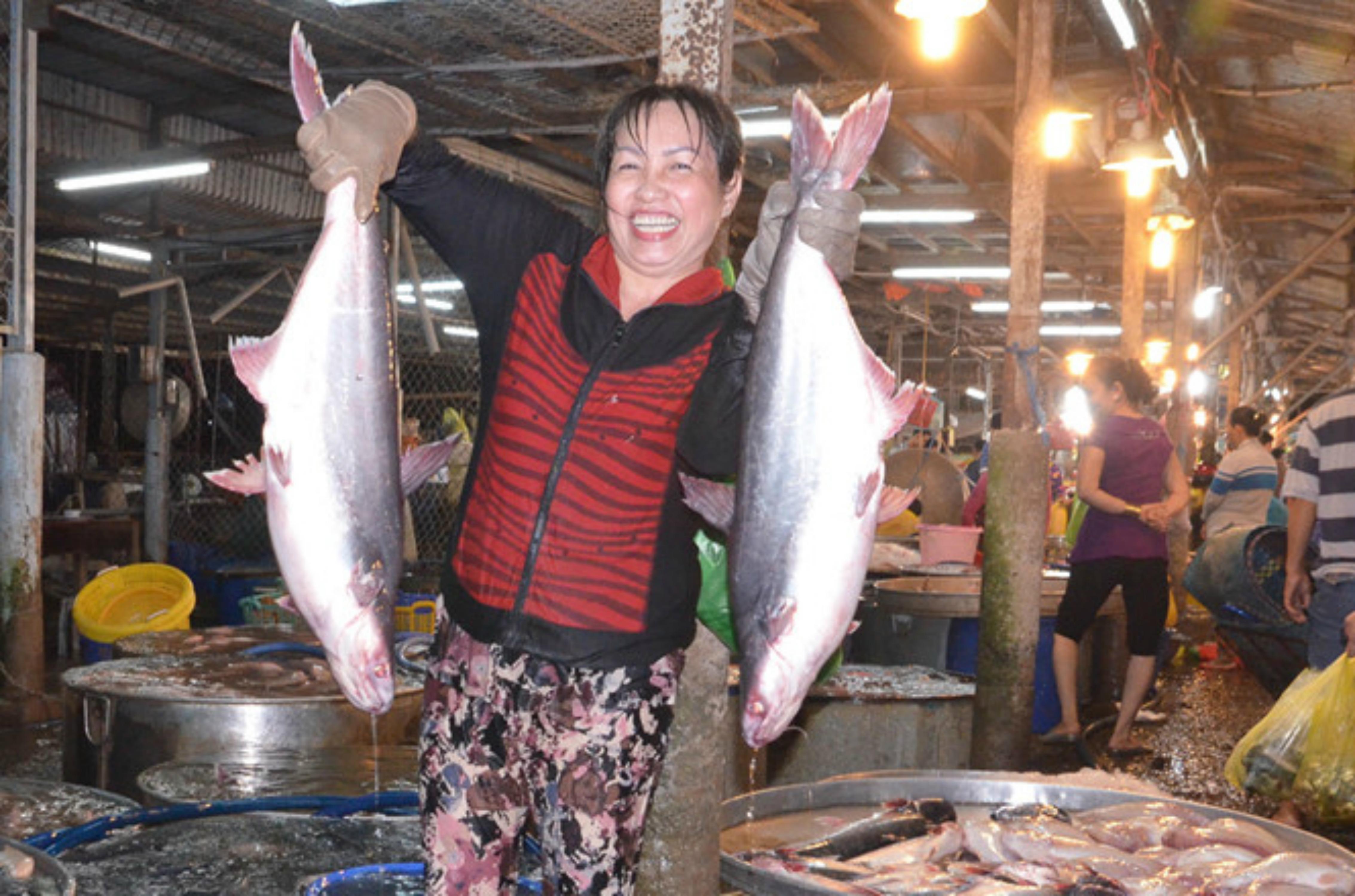 Vụ cá nục nhiễm độc ở Quảng Trị: đánh bắt xa bờ 30 hải lý vẫn không an toàn