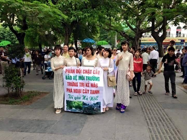 Chính quyền Hà Nội ra tay trấn áp thô bạo nhóm bảo vệ cây xanh