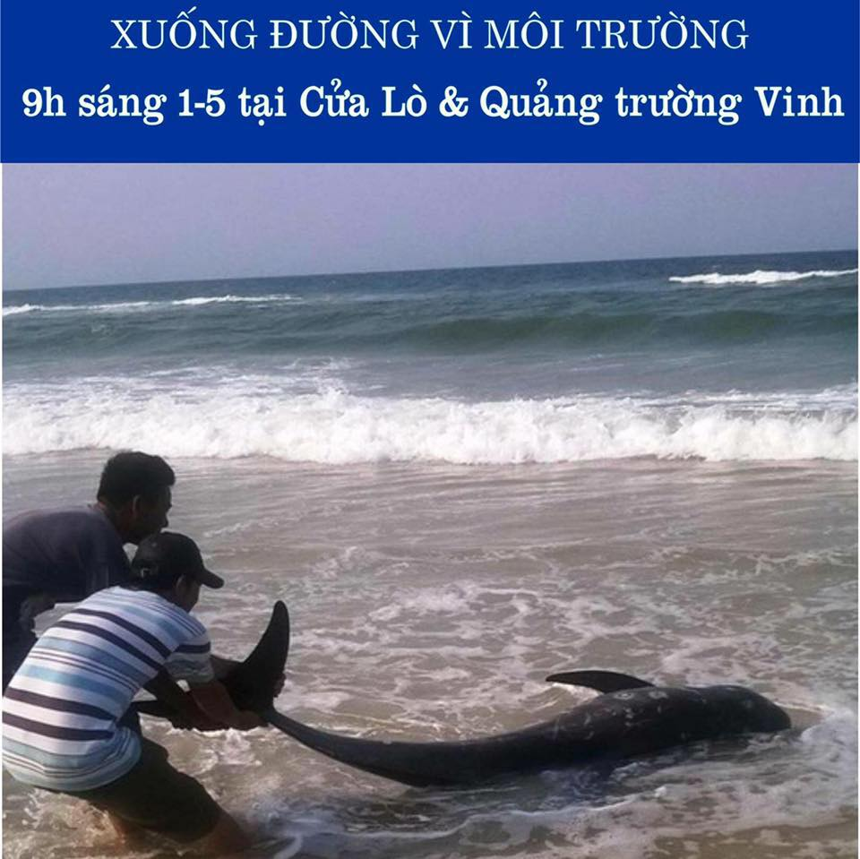 Tiếp theo Sài Gòn & Hà Nội, Nghệ An kêu gọi biểu tình để bảo vệ môi sinh