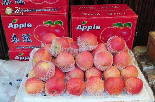 Việt Nam thú nhận không còn kiểm soát nổi táo độc Trung Quốc tràn ngập