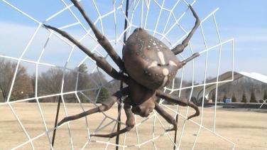 Những con bọ khổng lồ tại sở thú Kentucky