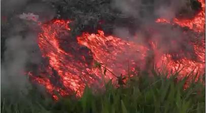 Dung nham núi lửa Puna trào xuống gần thành phố Pahoa
