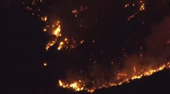 California: Nhân viên cứu hỏa cố gắng chặn cháy rừng