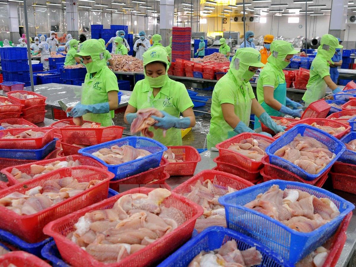 Chính quyền tiếp tục làm khó nhà xuất cảng thủy hải sản