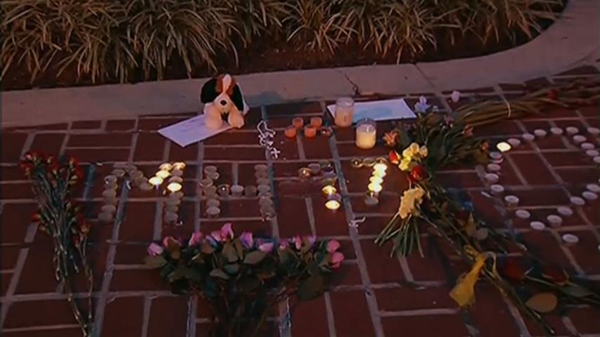 Tổ chức thắp nến ở Washington D.C để vinh danh nạn nhân của Malaysia Airline