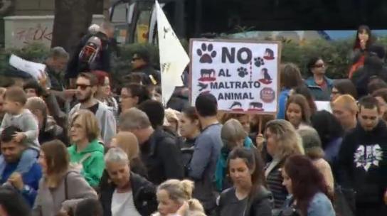 Barcelona tổ chức biểu tình sau khi toà án đảo ngược lệnh cấm đấu bò ở Catalonia
