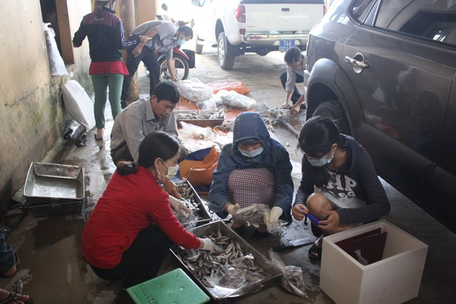 Ngư dân Quảng Trị không cho tiêu hủy hải sản vì mức đền bù chưa hợp lý