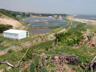 Ninh Thuận xin tiếp tục di dời dân bất kể dự án điện hạt nhân bị hủy bỏ