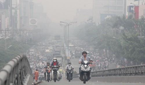 80% khu kỹ nghệ ở Việt Nam vi phạm các quy định về môi sinh