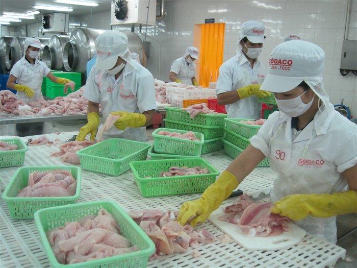 Trung Cộng sẽ thay Hoa Kỳ thành nhà nhập cảng cá tra lớn nhất của Việt Nam