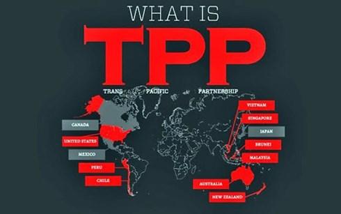 Việt Nam vào TPP: Phá sản?