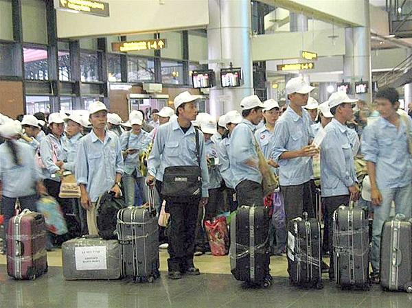 Việt Nam là nguồn cung cấp công nhân nước ngoài lớn thứ hai ở Nhật Bản