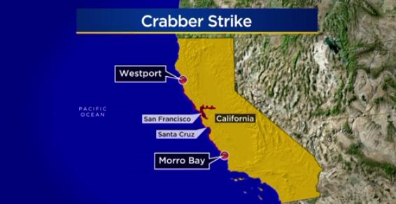 Ngư dân đánh bắt cua tiếp tục đình công từ California cho tới Canada
