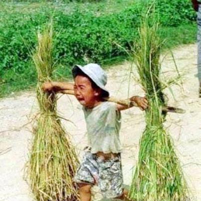 'Người Việt đang cực kỳ lạc quan về viễn cảnh kinh tế năm 2017'?