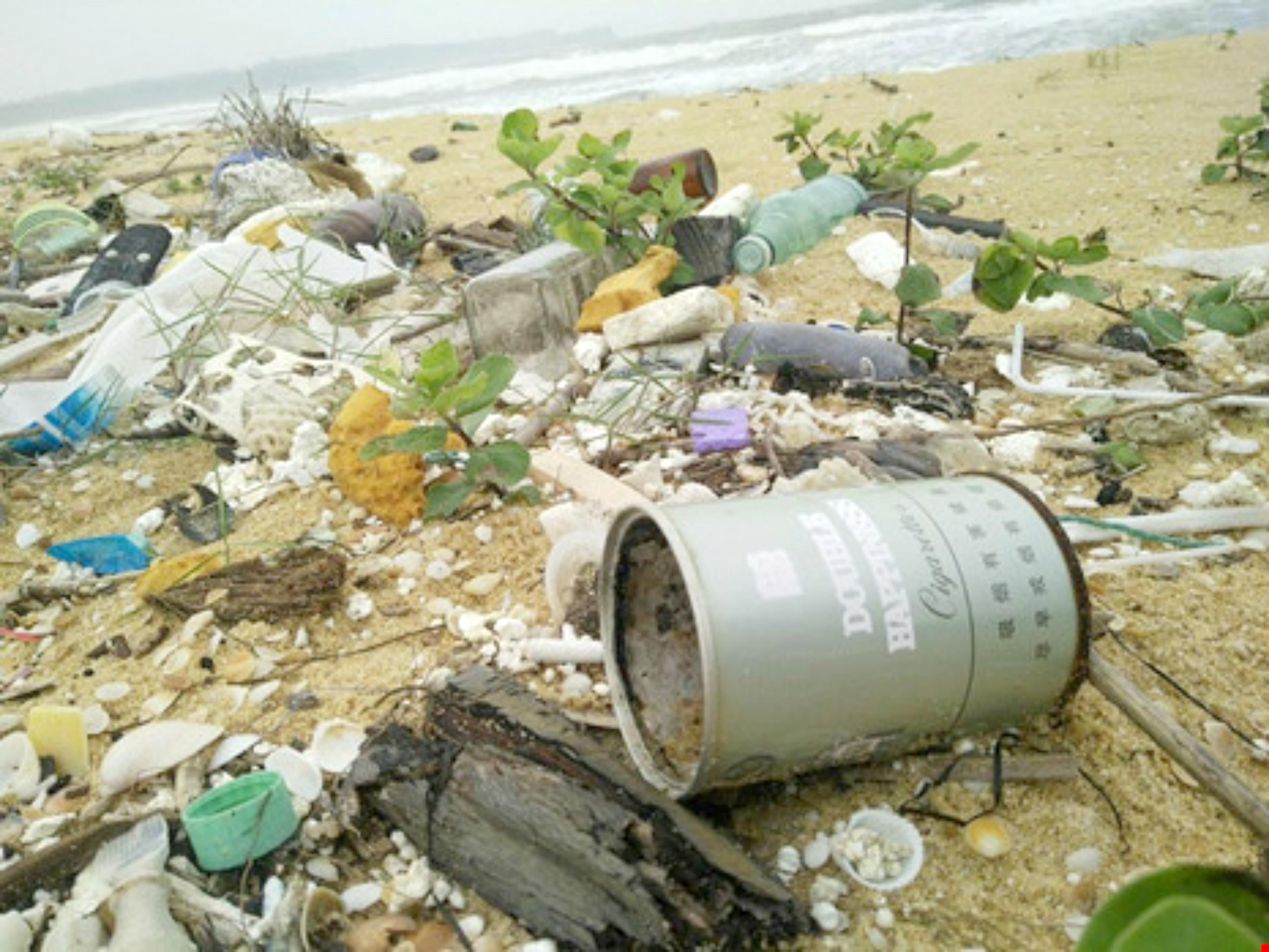 Rác thải có chữ Hán dạt vào bờ biển Quảng Nam