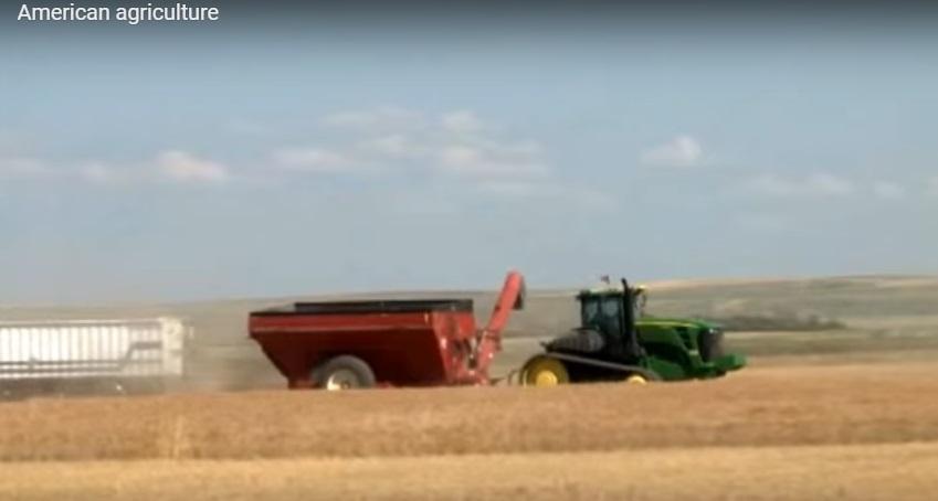 Chủ nghĩa bảo hộ của ông Trump sẽ gây thiệt hại cho nông dân Hoa Kỳ