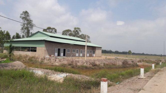 Công Ty Việt dụ dỗ nông dân Đồng Tháp phá lúa, thuê đất cho người Trung Cộng làm việc