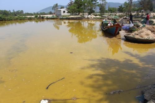 Vùng biển Thừa Thiên Huế bị phủ ngập bởi chất lạ màu vàng