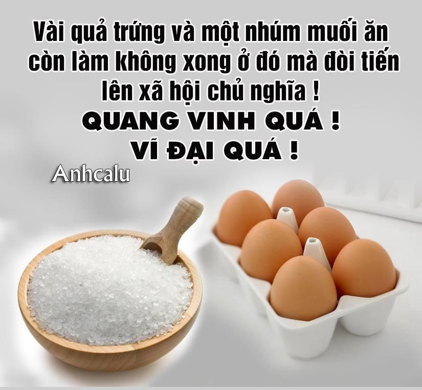 Bộ công thương cho phép, Việt Nam sẽ nhập khẩu muối và trứng