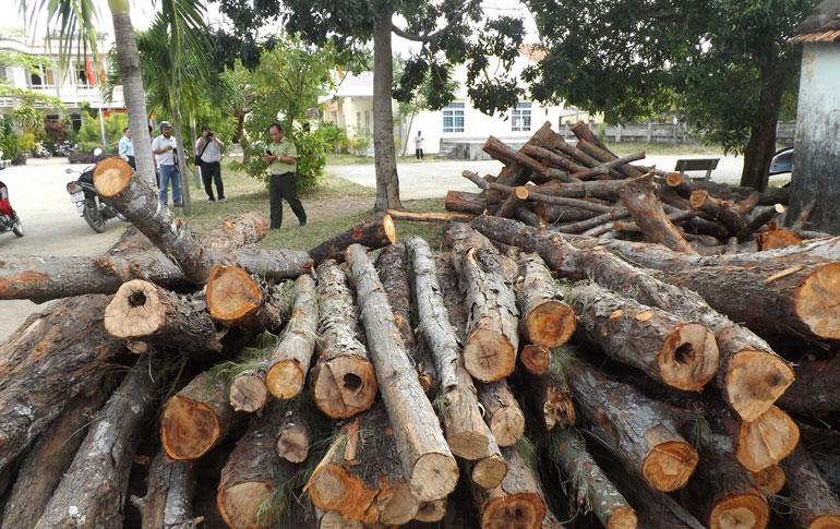 Tỉnh Phú Yên cấp tốc phá rừng vì một cuộc thi hoa hậu