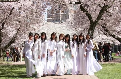 Sinh viên Việt tại Nhật tăng gấp 12 lần trong 6 năm