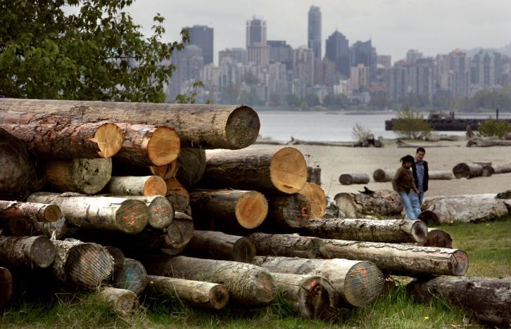 Hoa Kỳ tiếp tục cuộc chiến thương mại với Canada về gỗ