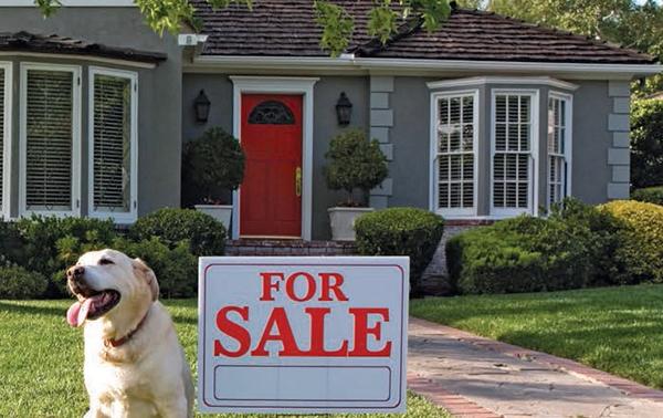 Công dân Việt Nam bỏ ra hơn 3 tỉ Mỹ kim trong 1 năm để mua nhà ở Mỹ