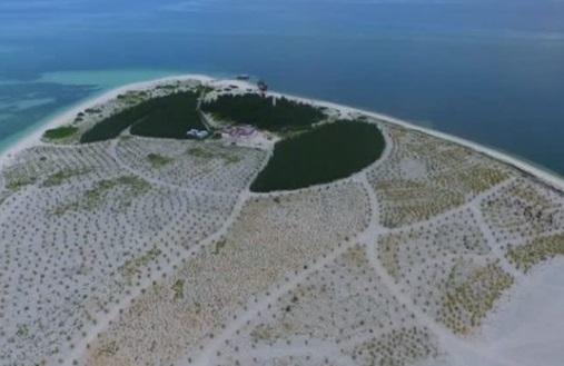 Chủ tịch Trung Cộng đích thân ra lệnh xây đảo trên Biển Đông