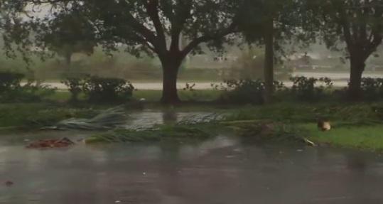 Thị trưởng Miami Beach vẫn có mặt trong văn phòng khi bão Irma tấn công Florida