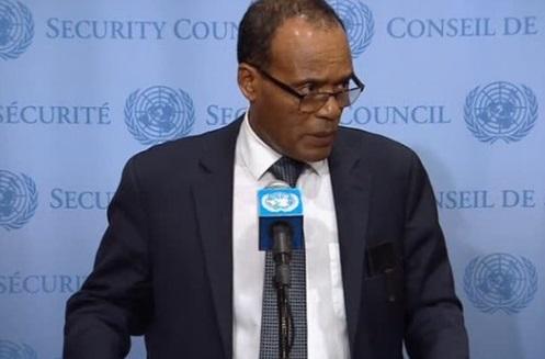 Hội Đồng Bảo An Liên Hiệp Quốc kêu gọi Myanmar chấm dứt chiến dịch quân sự nhắm vào người Rohingya