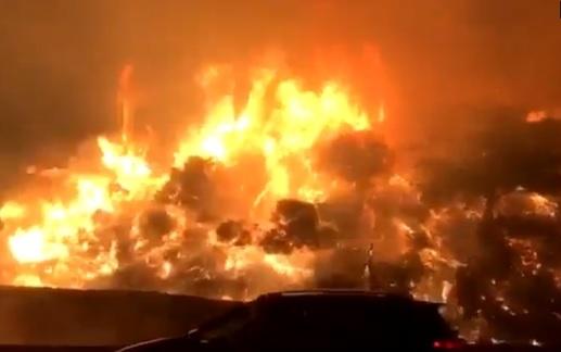 Cháy rừng ở Quận Cam, cư dân di tản, trường học đóng cửa