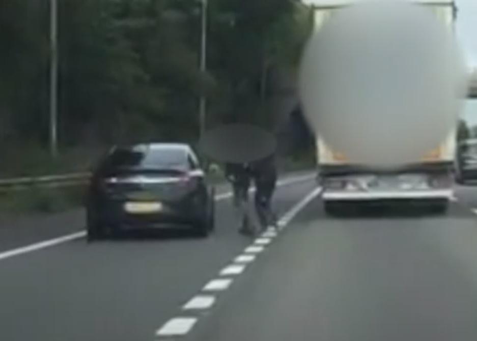 Cảnh sát Anh bắt giữ 13 người Việt trốn vào Anh trong xe hàng