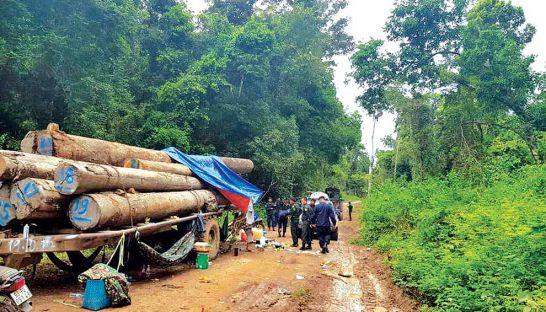 Quân cảnh Cambodia bắt 6 người Việt nghi vận chuyển gỗ lậu
