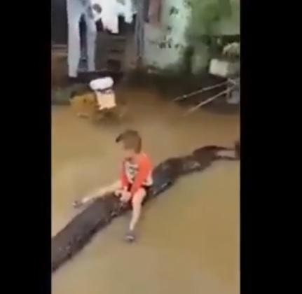 Bé 3 tuổi cưỡi trăn trong sân nhà ngập nước ở Thanh Hóa gây sốt trên mạng