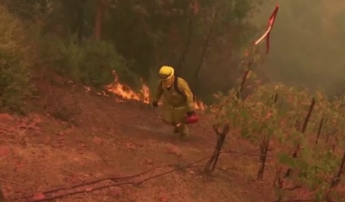 Ít nhất 40 người bị thiệt mạng vì cháy rừng ở California