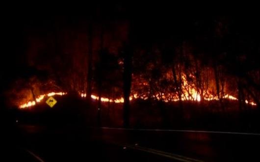 Cháy rừng ở California vẫn lan rộng, giết chết ít nhất 31 người