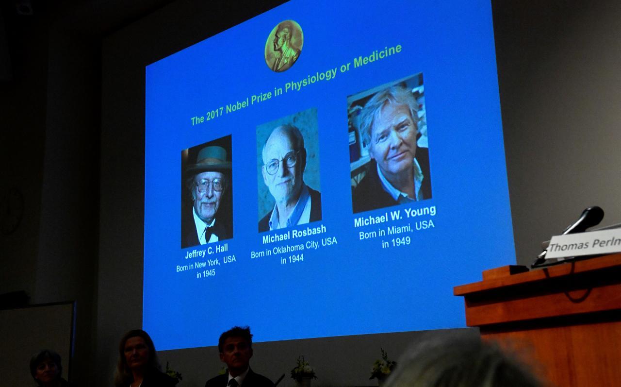 """3 khoa học gia Mỹ được trao giải Nobel Y Học với nghiên cứu """"đồng hồ sinh học"""""""