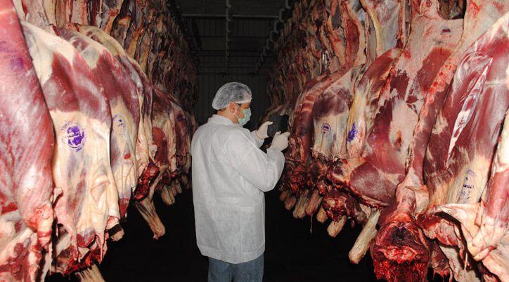 Một số  thịt trâu Ấn Độ xuất cảng lậu sang Việt Nam