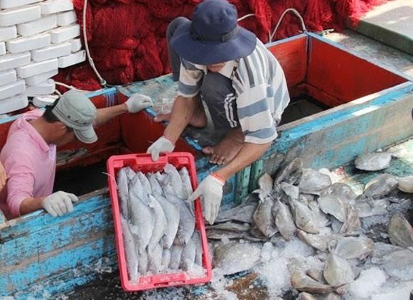 5 người chết bất thường tại nhà máy nước mắm của Thái Lan ở Phú Yên