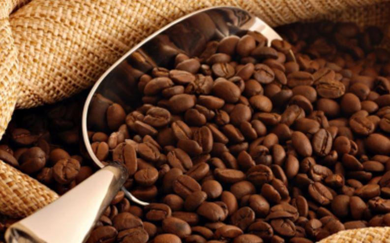 Gía một kí lô cà phê thô chỉ bằng một ly cà phê