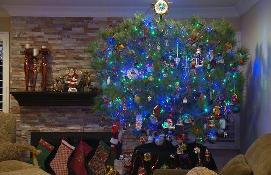 Một cây thông Giáng Sinh ở Los Angeles có tuổi thọ 34 năm