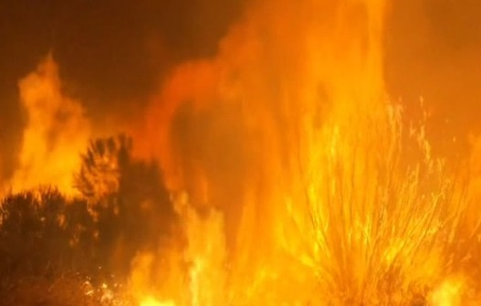 Cháy rừng lan rộng đe dọa hàng trăm ngôi nhà ở miền Bắc Los Angeles