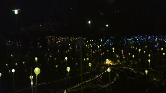 Đan Mạch thắp sáng 8,750 bóng đèn màu mừng nhà văn cổ tích Hans Christian Andersen