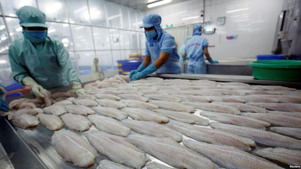 Việt Nam khiếu nại WTO vì Hoa Kỳ áp đặt thuế chống phá giá lên cá nhập cảng