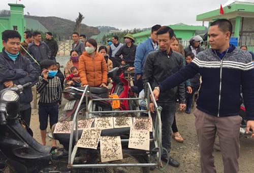 Người Hà Tĩnh mang bẫy ruồi biểu tình phản đối nhà máy rác