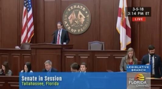 Thượng viện Florida thông qua dự luật hạn chế súng, cho phép giáo viên được vũ trang