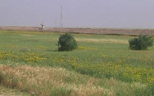 Isarel gởi 100 binh sĩ xạ thủ đến biên giới Gaza để đối phó với người Palestine biểu tình