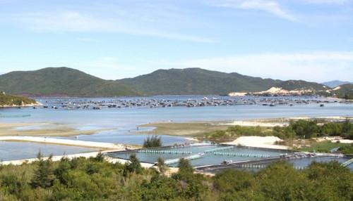Nghe tin lập đặc khu kinh tế, giới đầu cơ ồ ạt san lấp đồi ở Vạn Ninh- Khánh Hòa