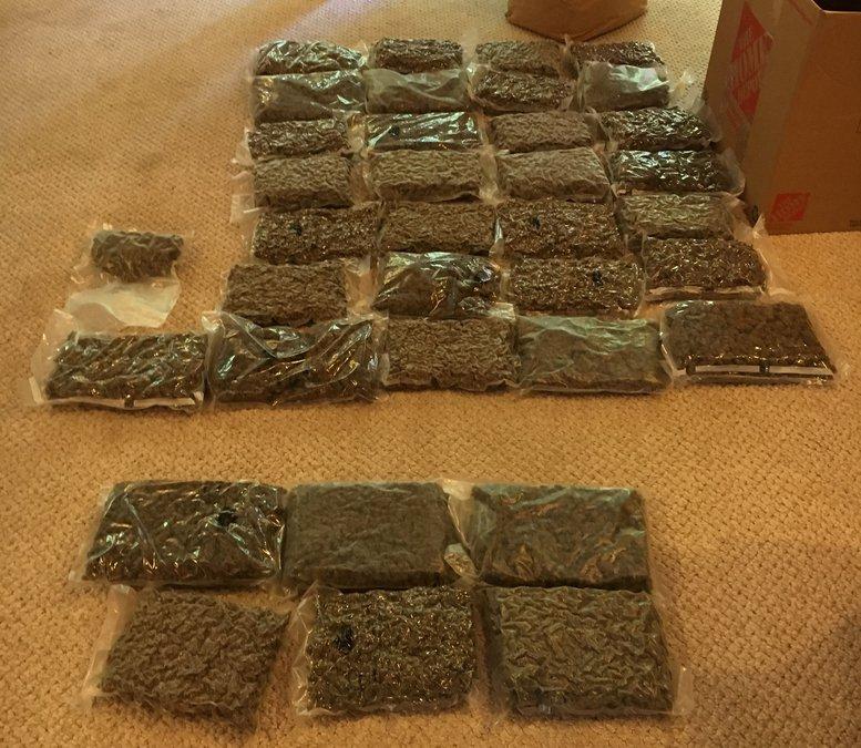 13 người gốc Việt ở Georgia bị truy tố vì trồng cần sa hơn 7 triệu USD